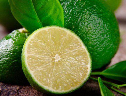 Citrus Bioflavonoids 20%